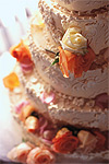 040809-cake